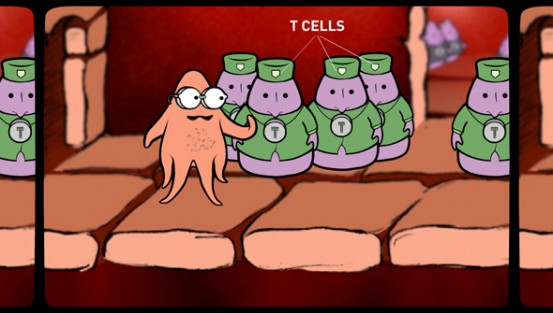 Dendritic Cell approaches the T-Cells